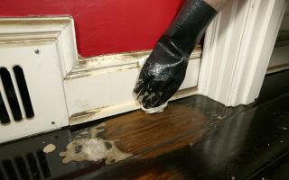 Уборка и химчистка квартиры после пожара: как правильно очистить жилье