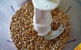 Как быстро чистят тыквенные семечки и ядра подсолнуха от кожуры на производстве и в домашних условиях; видео
