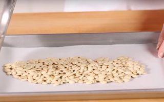 Как сушить тыквенные семечки в домашних условиях: способы заготовки тыквы и правила хранения