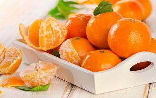 Хранение мандаринов в домашних условиях: где и как правильно хранить, сроки и подходящее место
