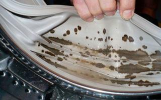 Как избавиться от плесени в стиральной машине: дезинфекция от грибка в домашних условиях
