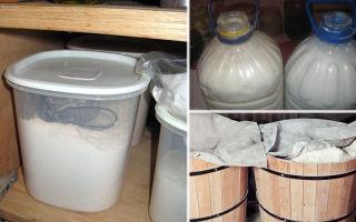 Как хранить муку в квартире: условия и правила хранения в холодильнике, как сделать, чтобы не заводились жучки