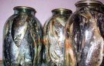 Как хранить вяленую рыбу в домашних условиях: 4 основных способа сохранить любимый деликатес на долгий срок