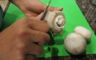 Правила очистки шампиньонов: обработка свежих грибов перед приготовлением