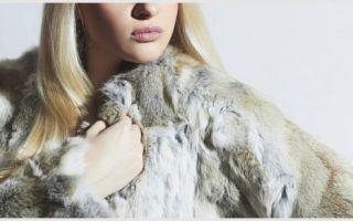 Как почистить мех кролика в домашних условиях: воротник, шубу и шапку