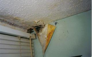 Как избавиться от сырости в доме: устранение повышенной влажности в помещении, устройство вентиляции