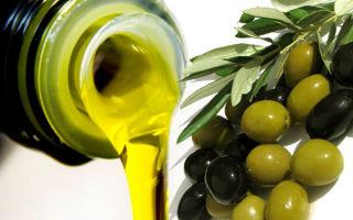 Хранение оливкового масла: виды и польза, правила выбора и срок годности после открытия, критерии емкости