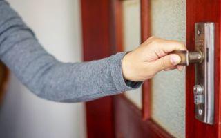 Скрип двери и способы его устранения: как смазать железную, пластиковую или балконную дверь в квартире