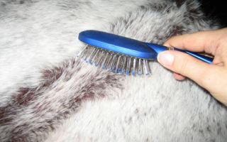 Как почистить меховой воротник: способы обновить и отбелить мех в домашних условиях