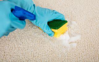 Как почистить ковер в домашних условиях: выбор моющих средств и особенности чистки шерстяных ковров