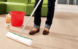 Средства для мытья пола: чем мыть разные напольные покрытия