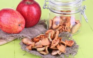 Сухофрукты: как в домашних условиях сохранить полезные вещества, условия хранения различных плодов