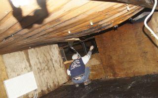 Как быстро избавиться от запаха гари в квартире: первые действия после пожара, народные способы устранения