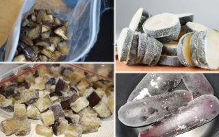 Как заморозить свежие баклажаны: на зиму, хранение в домашних условиях, способы заморозки