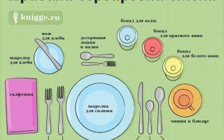 Сервировка стола: правила расположения столовых приборов для домашнего обеда в праздники и будни