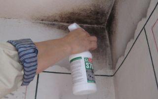 Плесень в ванной на потолке: как избавиться от грибка в квартире, чем обработать стены в ванной