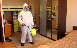 Дезинфекция квартиры: эффективные методы обеззараживания помещения в домашних условиях