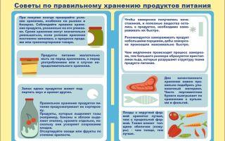 Способы и виды хранения чернослива в домашних условиях: срок его годности, как хранить в холодильнике