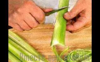 Как нужно чистить, резать и есть сельдерей правильно: варианты приготовления стебля и корня сырого овоща